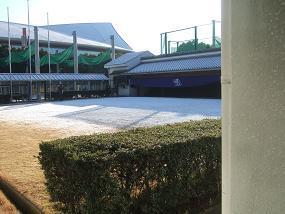 ガイシ矢道.JPG