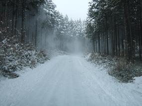 道場への道.JPG